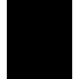 noun_344
