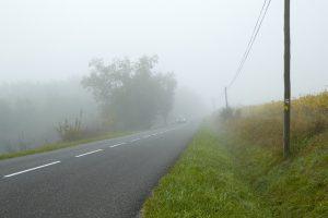 Petite route dans brouillard d'automne