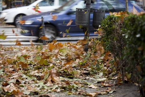 Feuilles d'automne près passage piéotns