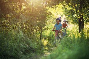 Balade à vélo été
