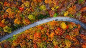 Route automne